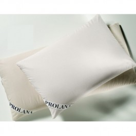 Millet Cushion Prolana
